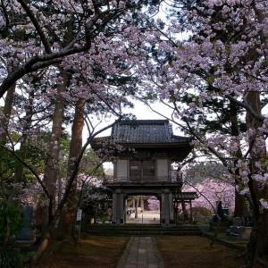 Matsumae teramachi